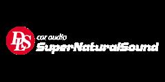 Logo, DLS