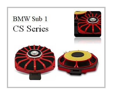 ESB Audio CS series BMW Sub 1