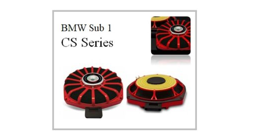 ESB Audio CS series BMW Sub 1